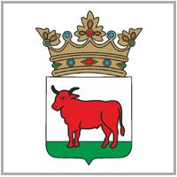 Burmistrz Trzcianki